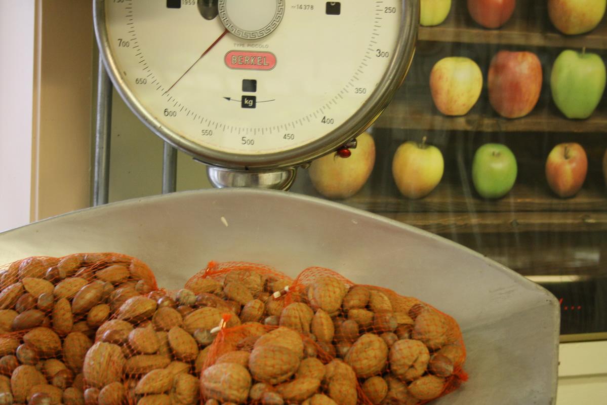 Biologische groenten en fruit Van Marwijk Elst